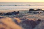 Sunset Playa Santana