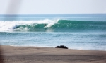 Surf Rio Nexpa