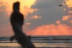 Sunset la Saladita